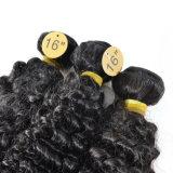 L'arricciatura brasiliana profonda dei capelli impacchetta 3 parti di 100% dei capelli umani non dei capelli di Remy