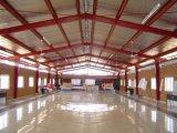 Professional Manufactural Entrepôt de structure en acier de haute qualité