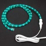 Il colore chiaro della corda dei 50 tester LED che cambia la corda al neon dell'indicatore luminoso LED della corda del LED coltiva l'indicatore luminoso
