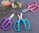 Handkreations-violette Farben-Handblumen-Scheren