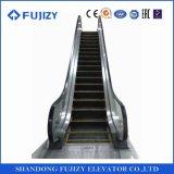 Эскалаторы общественного транспорта Fujizy сверхмощные