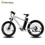 Fetter heißer Verkauf des Gummireifen-36V/250W das elektrische Fahrrad in China