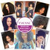 Prolonge crépue de cheveu bouclé de ventes de Yvonne d'Afro brésilien humain chaud de Vierge