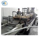 Strang-Ausschnitt des Wasser-300kg/H, der Masterbatch Doppelschraubenzieher-Maschine füllt