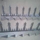 PVC上塗を施してある反上られた壁のスパイク