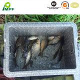 OEM imperméable isolante en mousse de polystyrène Anti-Impact mousse EPS produits aquatiques de boîtes d'emballage