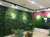 Высокое качество Искусственные растения и цветы в саду с цоколем GU20170523104623 по вертикали