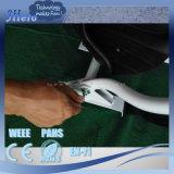 Shenzhen-Schwebeflug-Vorstand-Roller