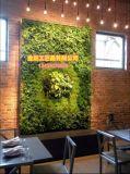Высокое качество Искусственные растения и цветы Зеленая Стена Gu1123wa0170
