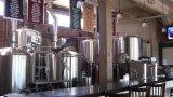 Het Bier die van de ambacht de Volledige Brouwende Oplossingen van de Lijn van de Verwerking maken