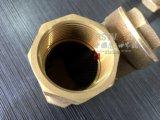 Setaccio Bronze d'ottone del filtrante Y del filetto femminile
