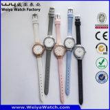 ODM 우연한 석영 형식 숙녀 손목 시계 (Wy-084A)