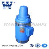 Асинхронный двигатель Пол-Вала серии Vhs (IP54/IP55) вертикальный для глубокого хорошего насоса