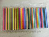 48의 색깔 연필 물집 포장