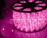 [لد] حبل ضوء/خارجيّة [ليغت/لد] [ستريب ليغت]/[نيون ليغت]/[كريستمس ليغت]/عطلة ضوء/فندق ضوء/قضيب خفيفة دورة اثنان سلك زاهية [25لدس] [1.6و/م] [لد] شريط