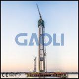 CE approuvé ascenseur de construction de cargaison électrique de haute qualité pour le bâtiment
