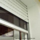 Lamelle plate de forme pour la porte d'obturateur de rouleau dans le profil en aluminium