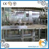 Máquina de engarrafamento Process automática da máquina de empacotamento