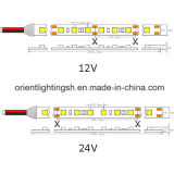 UL SMD5050 60 LEDs/M, tira de IP65 LED
