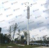 Éclairage galvanisé de structure métallique de rue unipolaire
