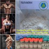 Droga grezza antineoplastica calda di Tam Nolvadex di vendita 99.5% del fornitore di GMP