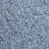 Mattonelle di pavimento cinesi della pietra del granito del materiale da costruzione lucidate
