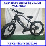 750W 48V/20ahの脂肪質の電気バイク