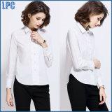 직업적인 형식 면 백색 긴 소매 셔츠