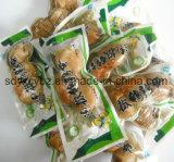 mit SGS genehmigtes Imbiss-Nahrungsmittelvakuum/flach Kunststoffgehäuse-Beutel