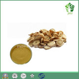 Extrait de racine pure d'Astragalus Membranaceus Polysaccharides et Astragalosides