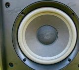301V 작은 Karaoke 스피커, 소형 스피커