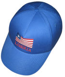 Chapeau à la mode (FH016)