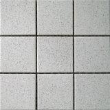 Tegels van de Muur van plattelanders de Ceramische (T119)