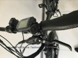 Deux Pneus de roue de magnésium de la suspension de matières grasses vélo électrique