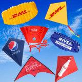 /OEM personnalisés Sport de plein air Publicité/Promotion/article promotionnel Logo cadeau Jouet de Kite pour la vente/Christmas