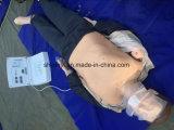 Manichino di CPR, manichino di x-y di addestramento di CPR di CPR300s per insegnamento medico