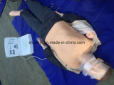 CPRの人体摸型、医学の教授のためのX-Y CPR300s CPRのトレーニングの人体摸型