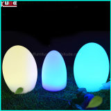 RGB Programmable Christmas Outdoor Light Christmas Decoration