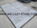 Tuile/étage normaux de granit de Wellest G302 Nero Santiago pavant la tuile/tuile décorative de mur