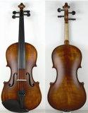 Популярные Master ученик скрипка экипировка