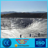 매립식 쓰레기 처리 사용을%s 6m 폭 원료 HDPE Geomembrane