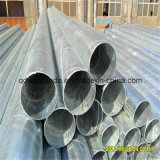 Hot DIP Galvanized Spiral Steel Pipe (OD219mm)