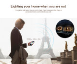 WiFi 관제사 (IBOX1)를 가진 WiFi Ibox 지능적인 빛