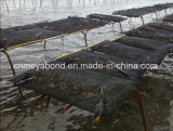 Meyabond 100%년 HDPE 굴 부대