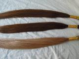 Stock에 있는 Virgin Remy Human Hair Bulk
