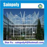 Estufa de vidro hortícola para Growing de flor