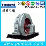 Grande motor 1800kw do moinho de rolamento do motor Synchronous do tamanho