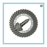 Kundenspezifisches Schmieden zerteilt gewundenes Kegelradgetriebe