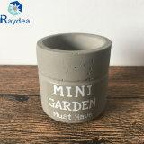 Mini crisol del cemento del jardín para el Succulent