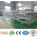 Quatre machines automatiques de ferme de cage de couche de capacité des rangées 128